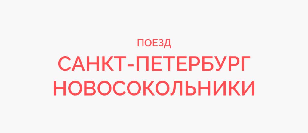 Поезд Санкт-Петербург - Новосокольники