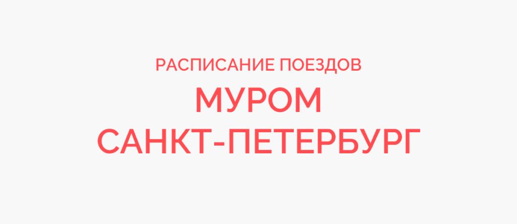 Поезд Муром - Санкт-Петербург